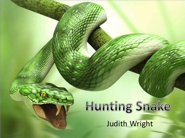 Hunting Snake by Judith Wright