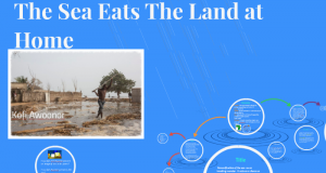 Analysis of 'The Sea Eats the Land At home